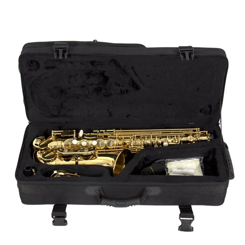 Professional Alto Eb Sax Saxophone Gold with Other Accessories New