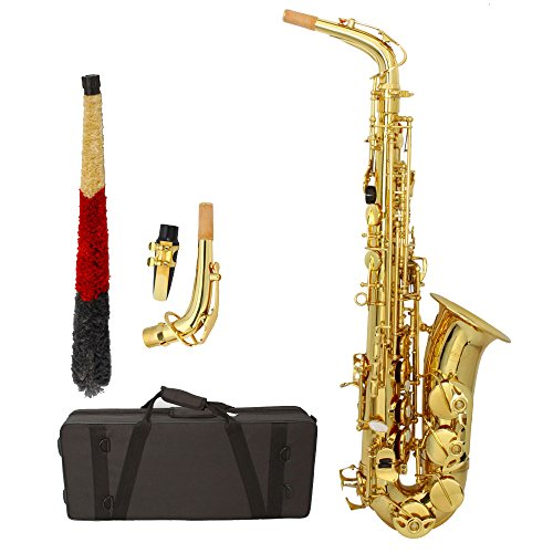 Z ZTDM Professional Alto Eb Saxophone sax with Mouthpiece Reed Case Aglet & Accessories Paint Gold